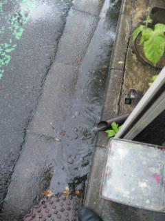 久しぶりの雨