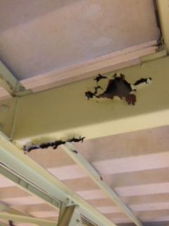 小学校体育館の天井鉄骨補修塗装
