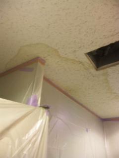 トイレの天井