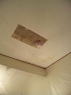 古い天井材が顔を出しました